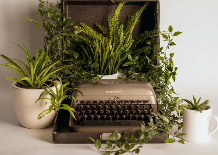 A typewriter with many plants growing around it.